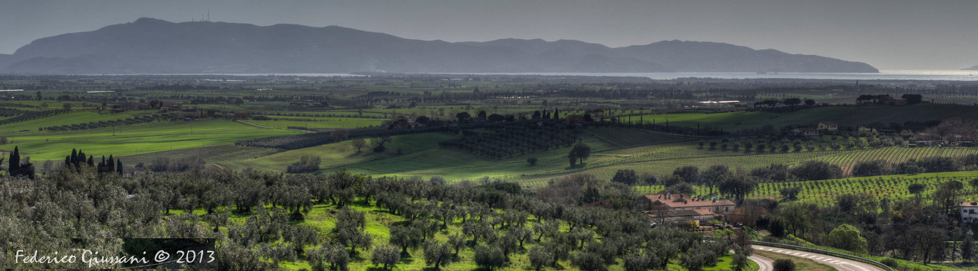Maremma Tuscany olive groves and panorama