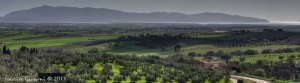 Maremma Tuscany olive groves and panorama