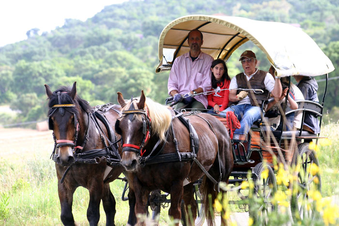 Chariot tour in Uccelina Nature Park, Maremma Tuscany